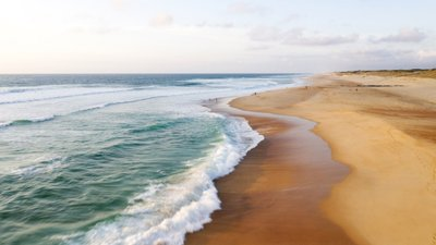 Ocean Lodges - immobilier neuf Seignosse