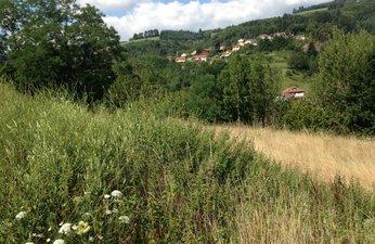 Les Roches - immobilier neuf Lamure-sur-azergues