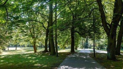 Arborea - immobilier neuf Dijon