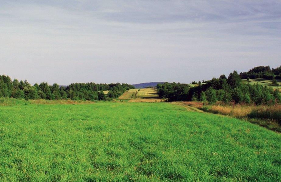 Terrain  Saint-germain-du-plain - Les Champs De La Vigne